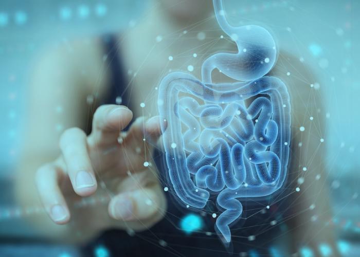 Heal Crohn's Disease Naturally - High Carb Health