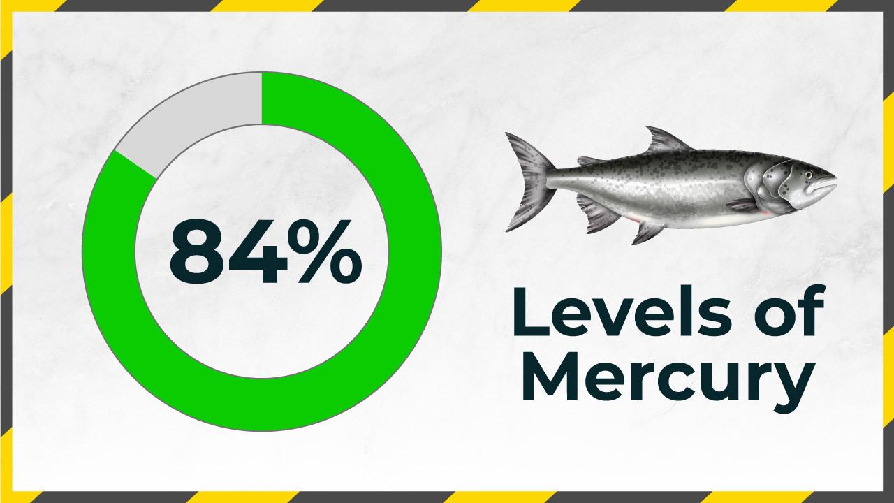 Mercury-Levels-in-Water