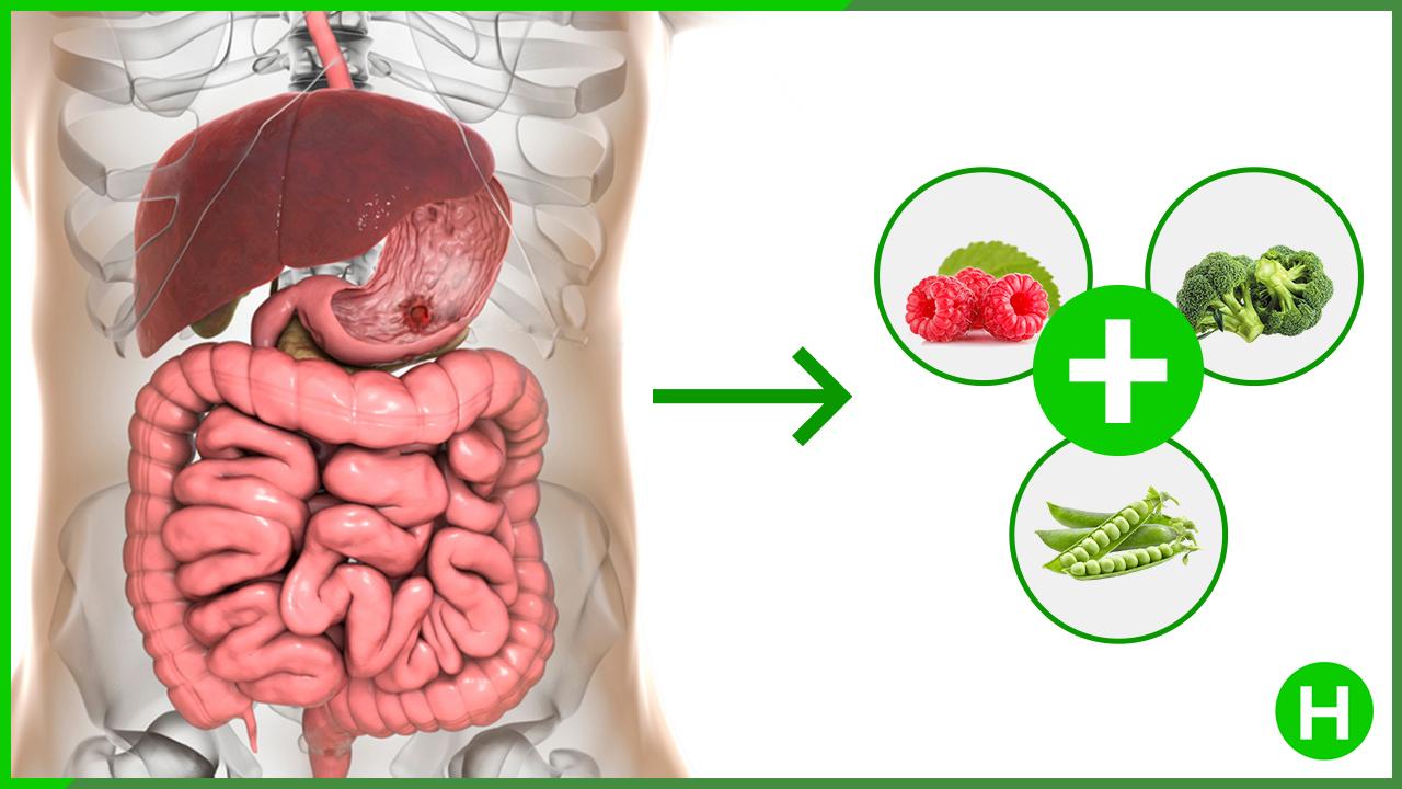 improve gut microbiome