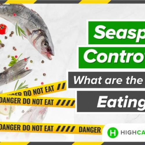 The Seaspiracy Controversy: What are the Dangers of Eating Fish?