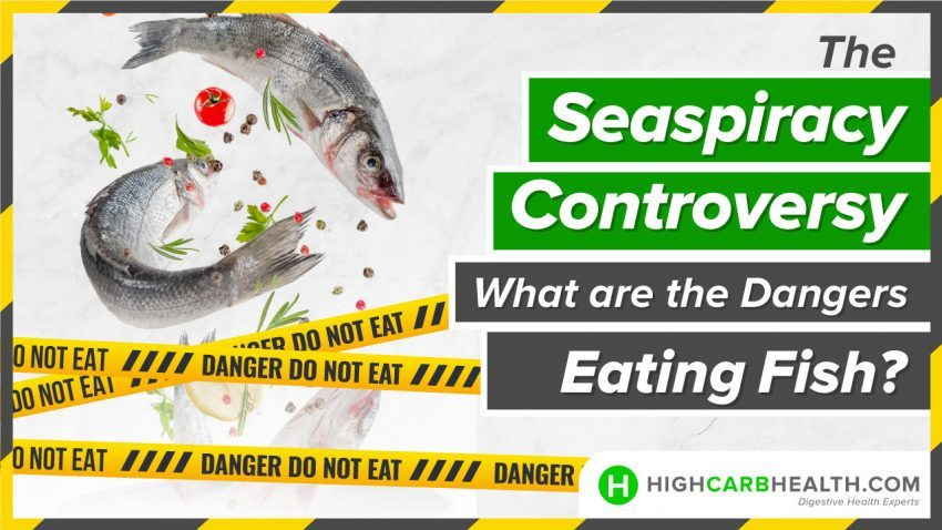 The Seaspiracy Controversy What are the Dangers of Eating Fish